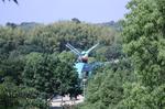 蜻蛉池公園(あじさい)2