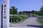 蜻蛉池公園(あじさい)6