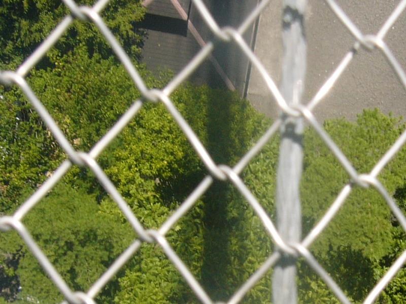 谷瀬の吊り橋6